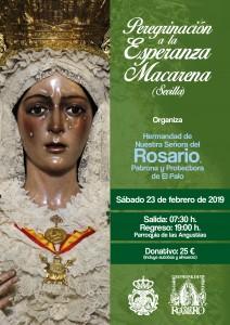 Peregrinación a la Esperanza Macarena @ Basílica de la Esperanza Macarena